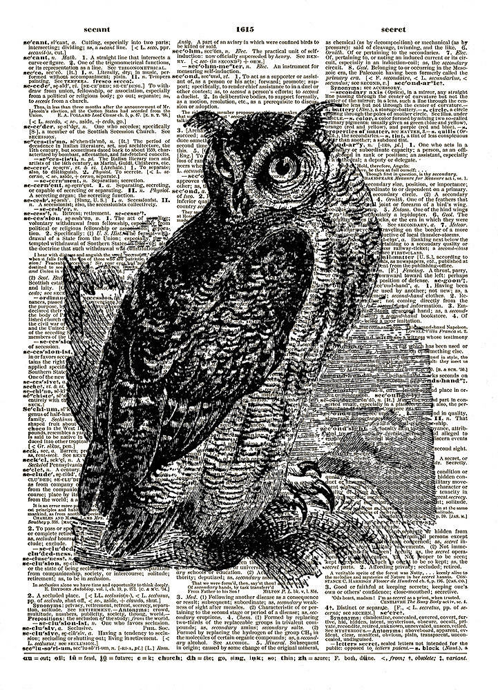 Horned Owl Art Bird on a Branch Vintage Dictionary Art Print No. 0171