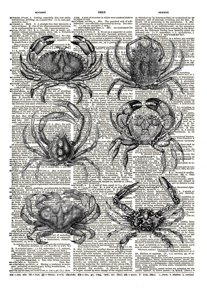 Six Little Crabs Beach Ocean Animal Vintage Dictionary Page Art Print No. 0176