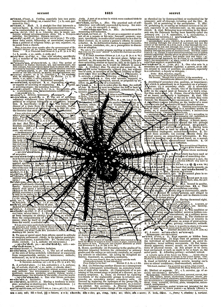 Spider in Web Antique Artwork Vintage Dictionary Art Print No. 0184