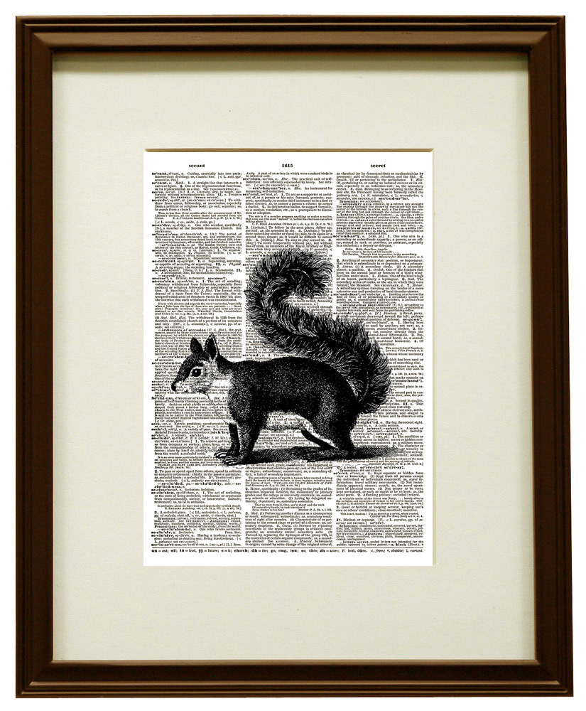 Bushy-tailed Squirrel Forest Animal Vintage Dictionary Art Print No. 0186