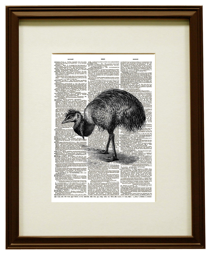 Australian Emu Bird Animal Vintage Dictionary Art Print No. 0187