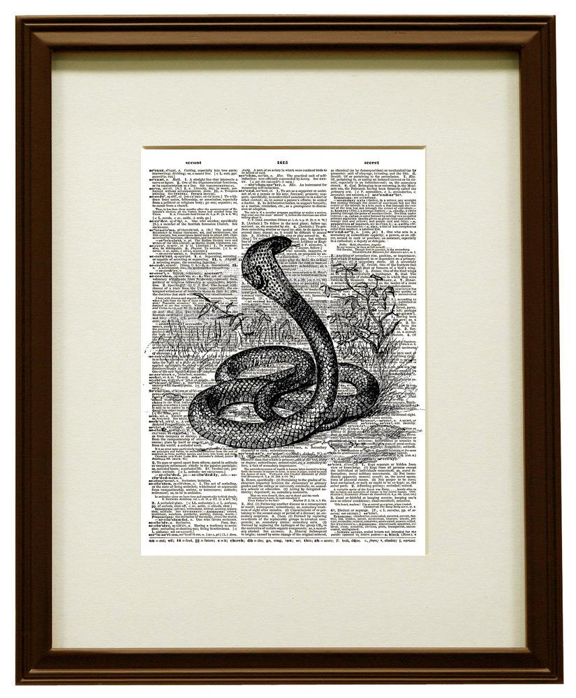 Cobra Snake Venomous Reptile Vintage Dictionary Art Print No. 0189