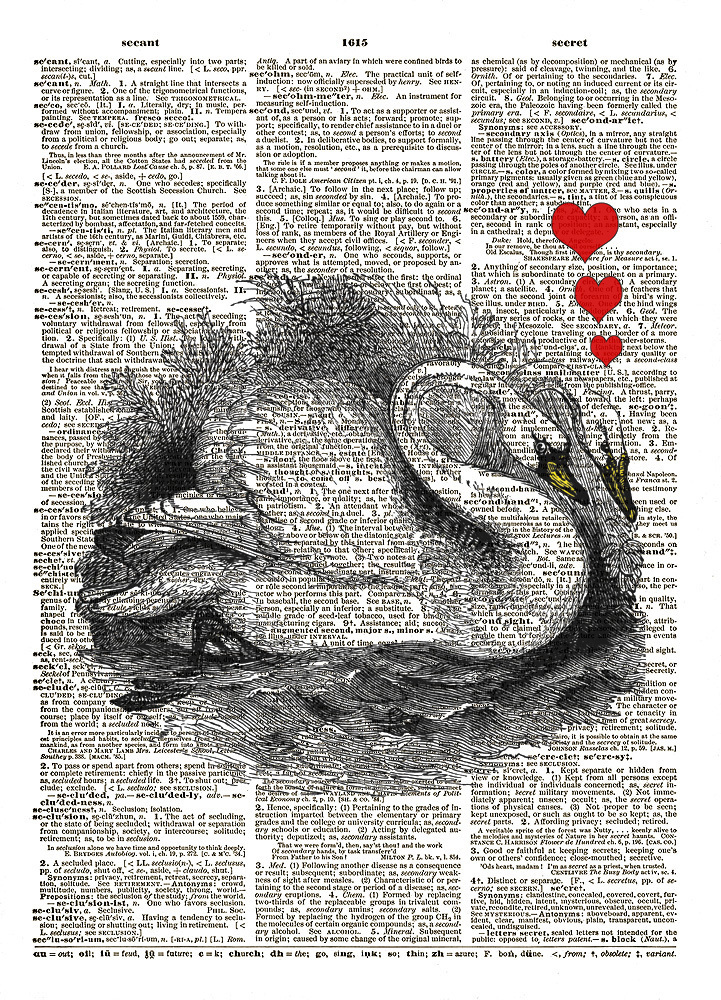 Swans in Love Color Aquatic Birds Animals Vintage Dictionary Art Print No. 0193