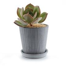 T4U 4.3 Inch Ceramic Modern Line Design Succulent Plant Pot/Cactus Plant... - $17.29
