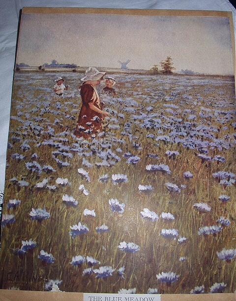 Blue field 04