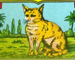 Redo cat dye label 3 001 thumb155 crop