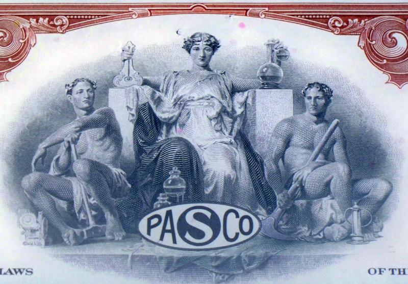 Pan american sulphur stock certificate 005