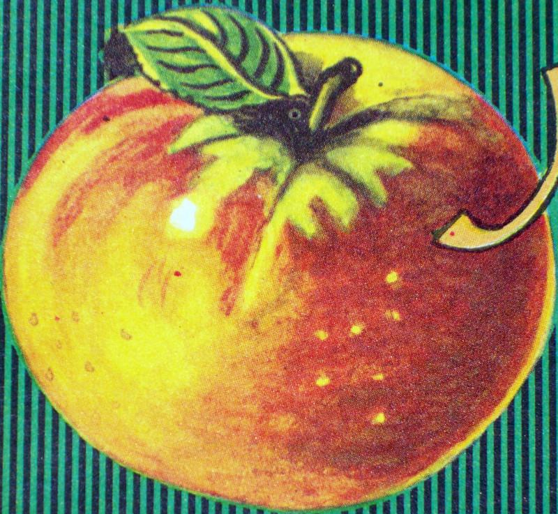 Apple labels 002