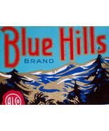 BLUE HILLS Bourbon Whiskey, One Quart Label 1930s-1940s - $1.19