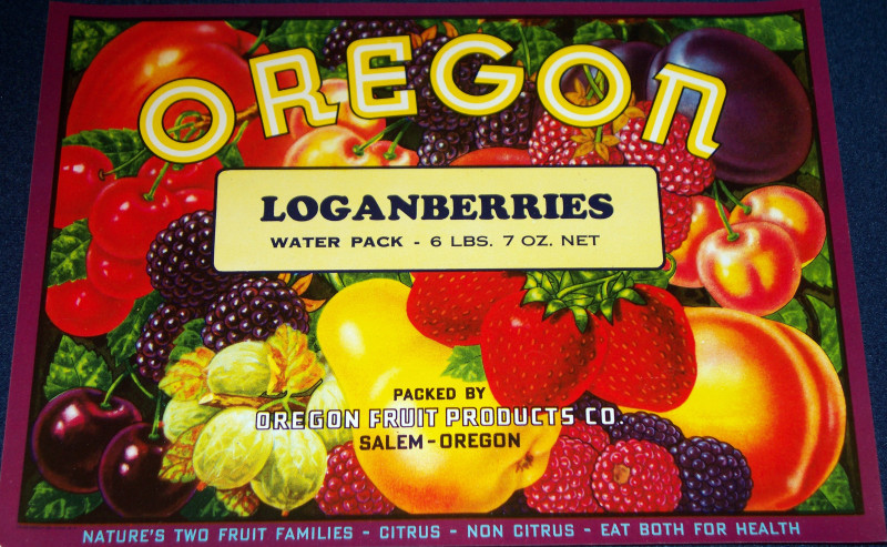 Oregon loganberries crate label 001