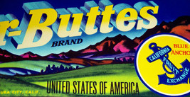 Amazing Colors! Sutter-Buttes Crate Label, 1930s - $5.99