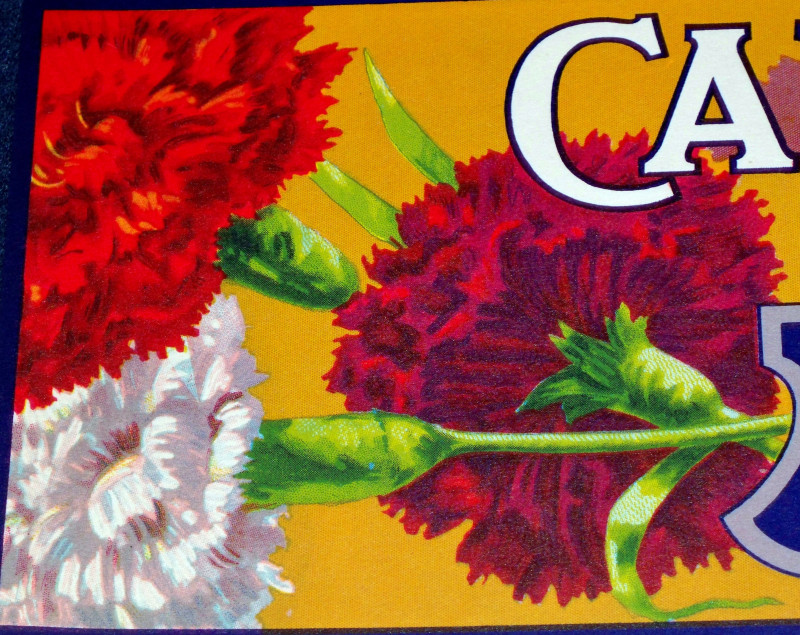 Carnation crate label 002