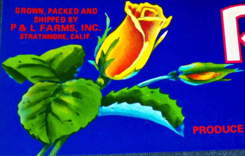 Rosebud crate label 003 001