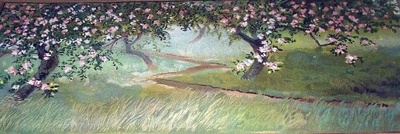 Apple blossoms 12