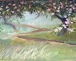 Apple blossoms 12 thumb155 crop