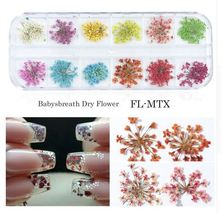 HS Store - Babysbreath Dry Flower Nail Art Decals Decoration Natural Floral - $2.97