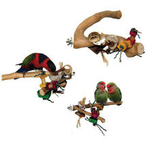 A&E Cage Assorted Java Wood Branch Bird Toy Medium 644472018448 - £25.54 GBP
