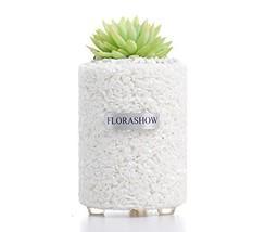 FLORASHOW Succulent Pots, ChinastoneMaterialsMini2.63 inch Succulent... - $21.45