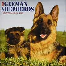 Just German Shepherds 2019 Wall Calendar Dog Breed Calendar - $14.33