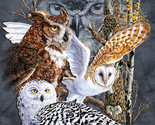 Owls of the  world cross stitch pattern thumb155 crop