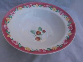 Pfaltzgraff Grandma's Kitchen Vegetable Serving Bowl Atmosphere Pink Border - $24.39