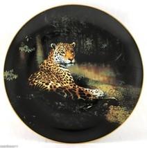 The Jaguar World's Most Magnificent Cats 1991 Charles Fracé Bradford Pla... - $39.95