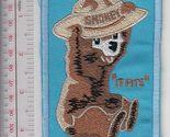 Smokey the bear usfs smokey junior tries a ranger hat   it fits   blue  9.99 thumb155 crop