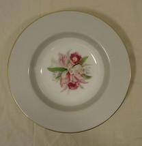 Noritake 5049 Vintage Soup Bowl 8in x 8in x 1 1/2in China Gold Rim - $14.74