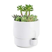 Greenaholics Plant Pots - 5.8 Inch Self Watering Planter with Water Cont... - €22,11 EUR