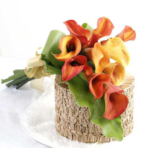 100 Calla Lily Seeds Rare Colorful Beautifully For Home Garden Flower Seed S070 - $13.58