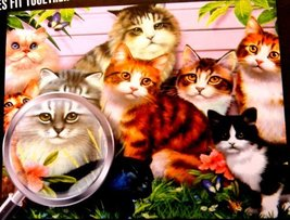 Flawless Finish 1000 Piece Puzzle Cats Kittens Kitties Howard Robinson - $34.98