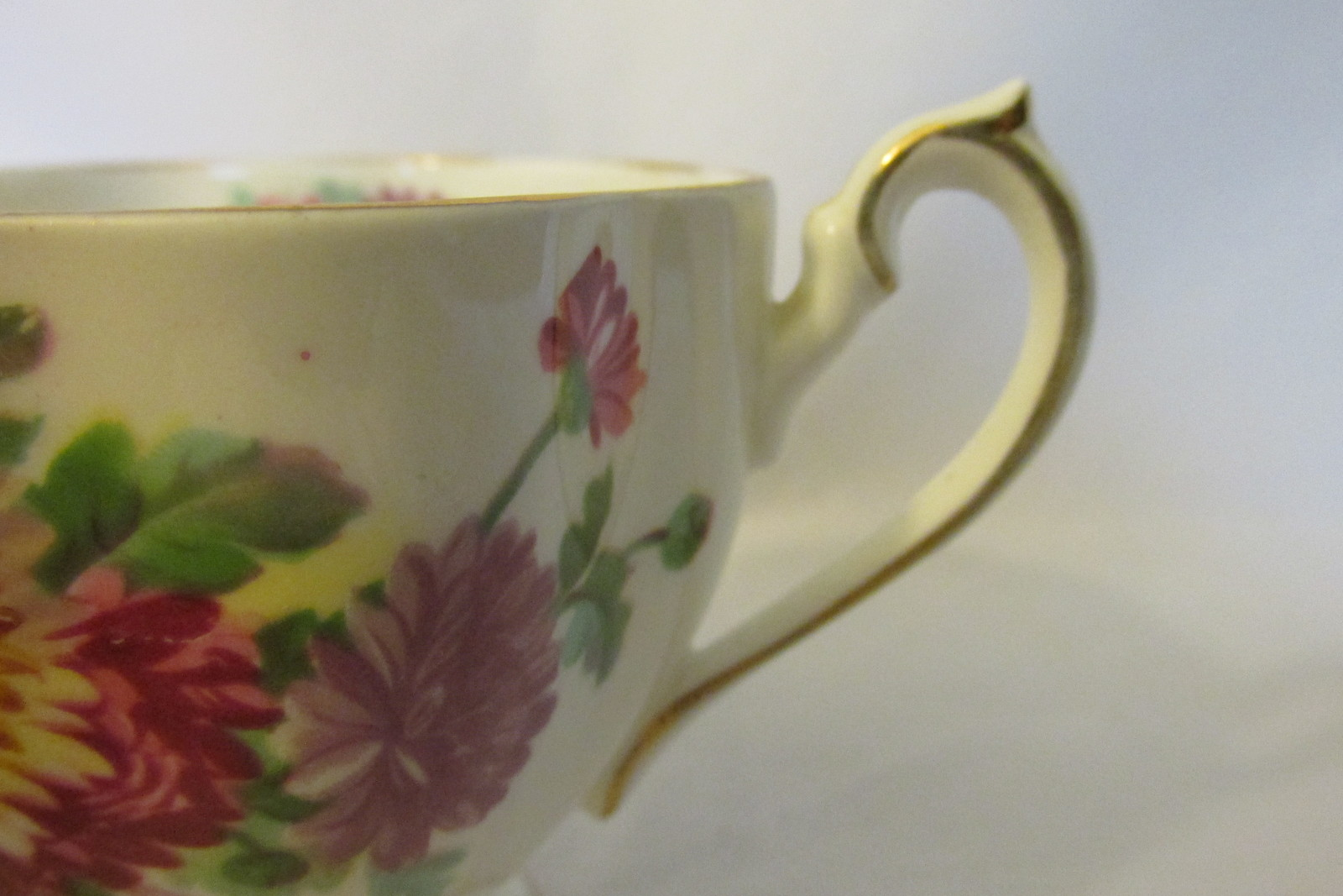 "Queen Anne English Bone China Cup & Saucer - ""Autumn Glory"" Pattern with Mums"
