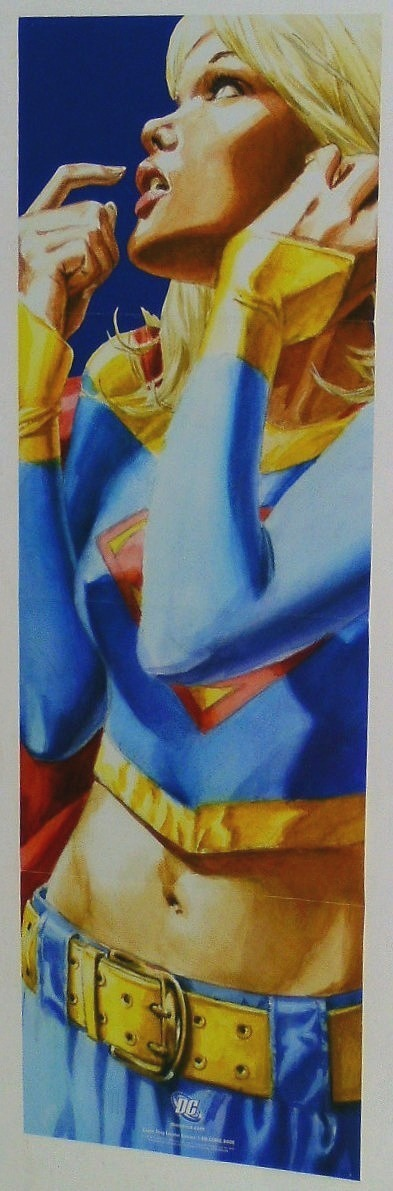 Supergirl banner 2008 3411