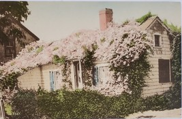 An Old Sconset Cottage Nantucket Island, Massachusettes Postcard - $1.95