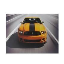 "Northlight Fiber Optic LED 2013 Ford Mustang Boss 302 Canvas Art 12"" x 1... - $19.59"