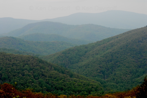 Shenandoah National Park, Va,  12x18 Photograph