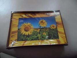 Hallmark 10 blank notes with sunflower design and 10 matching envelops - $5.95