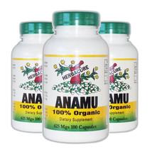 Herbacure Anamu 625mg (1250 Mg Per Serving)  100 Capsules 3 Pack! by Her... - $44.43
