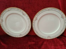 NORITAKE Barrymore set of 2 dinner plates excellent condition  - $16.78