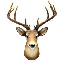 Wall Mount Mule Deer Shoulder Bust/Fake Taxidermy Buck Head Man Cave/Cab... - $49.28