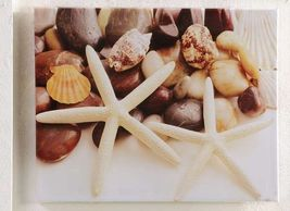 "20""x16"" Nautical Starfish & Shells - Stretched Canvas Print - Indoor/Outdoor"