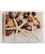 """20""""x16"""" Nautical Starfish & Shells - Stretched Canvas Print - Indoor/Out... - $39.59"""