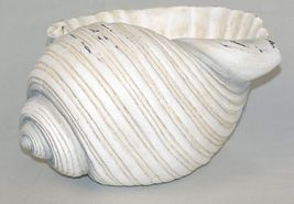 "9"" Nautical Conch Shell Planter Bowl Polystone NEW"