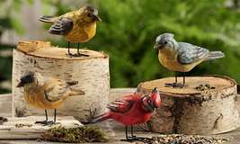 Bird Figurines - Robin Bluejay Cardinal Yellowbird  Set of 4 Polystone