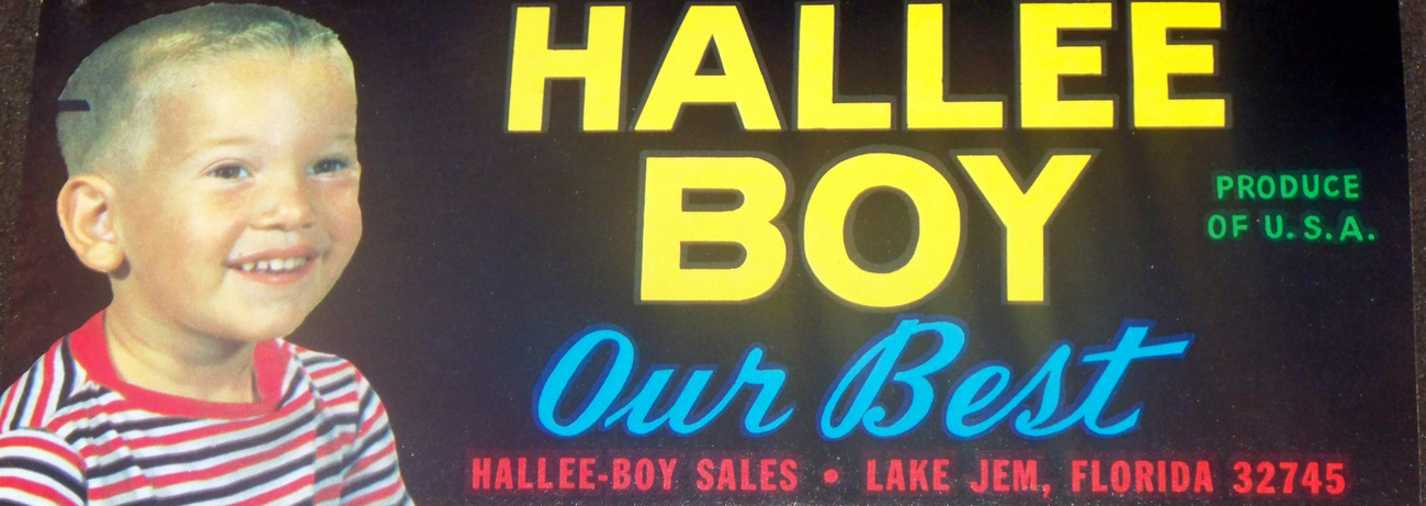 Our Best! Hallee Boy Crate Label, 1960's