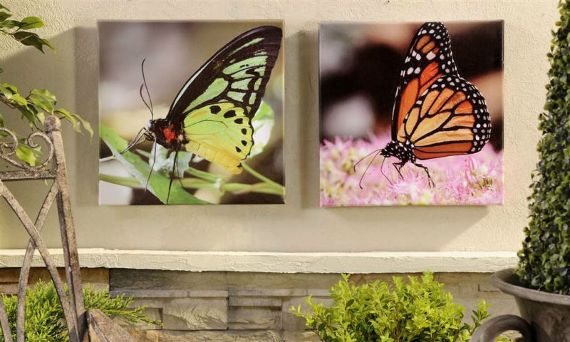 Set of 2 Butterfly Framed Canvas Prints Indoor / Outdoor UV Protection NEW