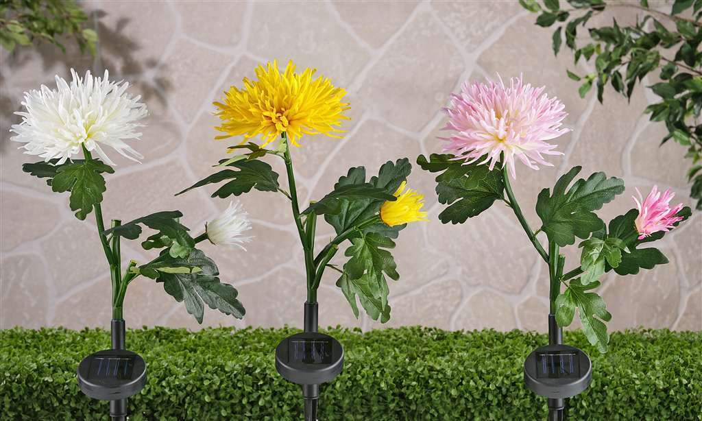 "Set of 3 - 22"" SOLAR POLYESTER CHRYSANTHEMUM GARDEN LIGHT STAKES"