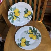 Royal Norfolk Lemon Dinner Plates 10.5 Inches Set Of 2 NWT - $14.85