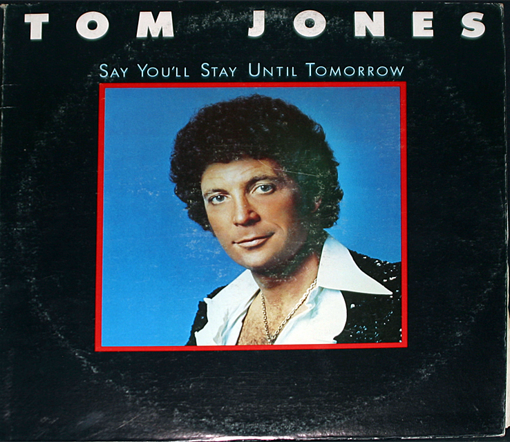 Tom jones  say you ll stay cover