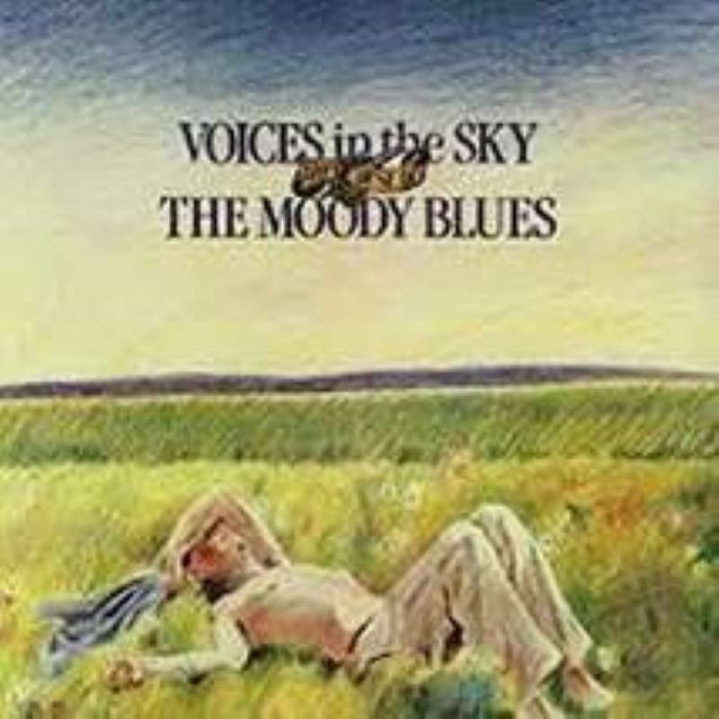 Voices in the Sky: Best of Moody Blues  Cd